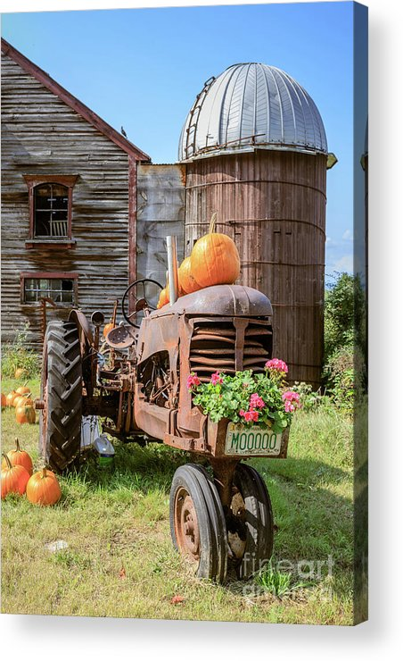 Tractor Acrylic Print featuring the photograph Harvest Time Vintage Farm With Pumpkins by Edward Fielding