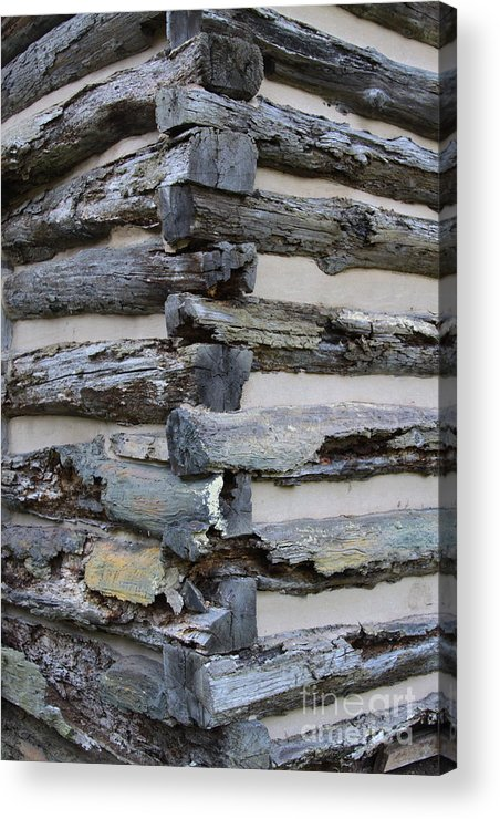 Cabin Acrylic Print featuring the photograph Jiont-ing by Robert Pearson