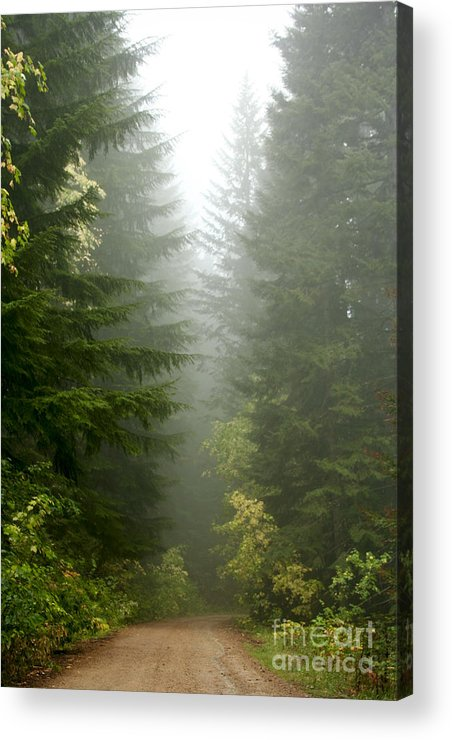 Forest Acrylic Print featuring the photograph Journey Through The Fog by Idaho Scenic Images Linda Lantzy
