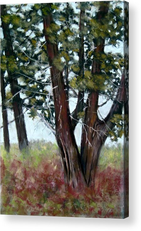 Landscape Acrylic Print featuring the painting Juniper by Carl Capps
