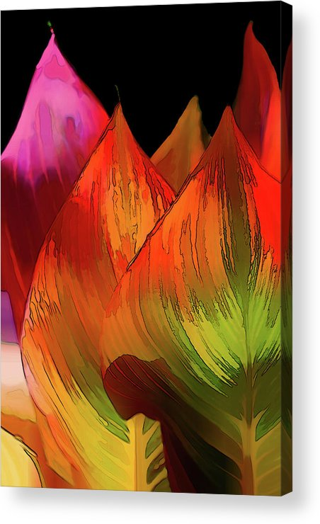 Croton Acrylic Print featuring the digital art Leaves Aflame by Terry Davis