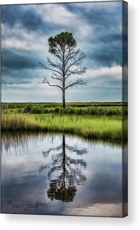 Tree Acrylic Print featuring the photograph Lone Tree Reflected by Erika Fawcett