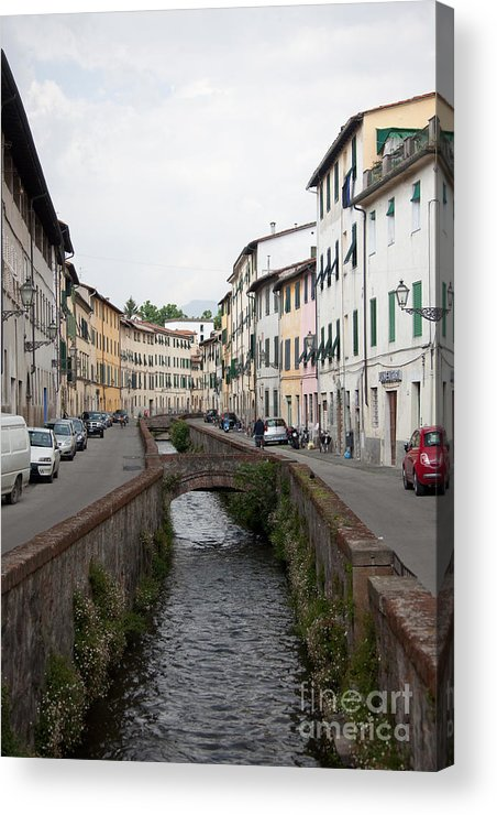 Lucca Acrylic Print featuring the photograph Lucca by Steven Gray