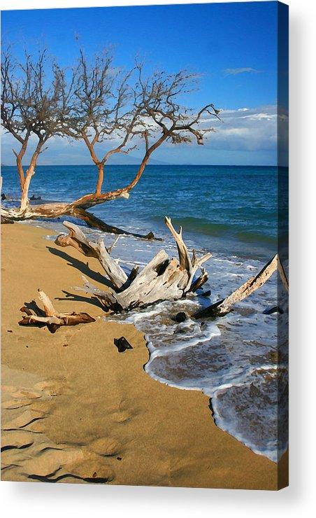 Maui Acrylic Print featuring the photograph Maui Beach Dirftwood Fine Art Photography Print by James BO Insogna