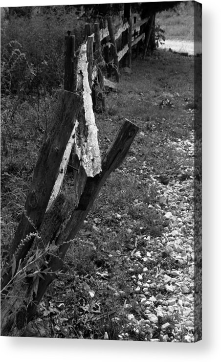 Ansel Adams Acrylic Print featuring the photograph Momsvisitfence2 by Curtis J Neeley Jr