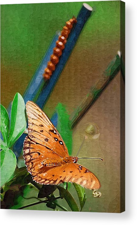 Monarch Acrylic Print featuring the photograph Monarch And Caterpillar by Donna Bentley