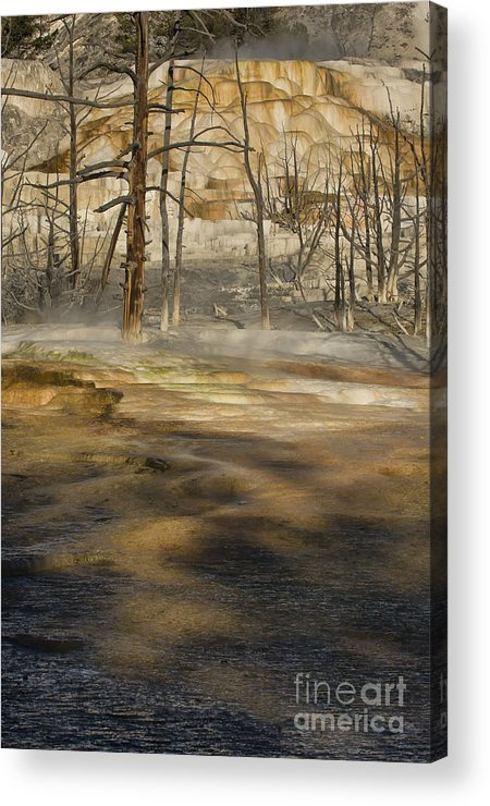 Yellowstone Acrylic Print featuring the photograph Morning Light On Mammoth Terrace by Sandra Bronstein