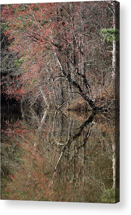 Morning Acrylic Print featuring the photograph Morning Reflection by Richard McRee