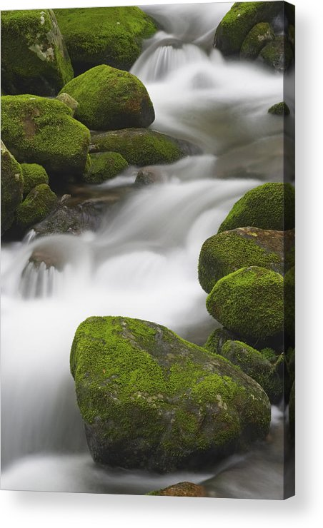 Brook Acrylic Print featuring the photograph Mossy Boulders by Harold Stinnette