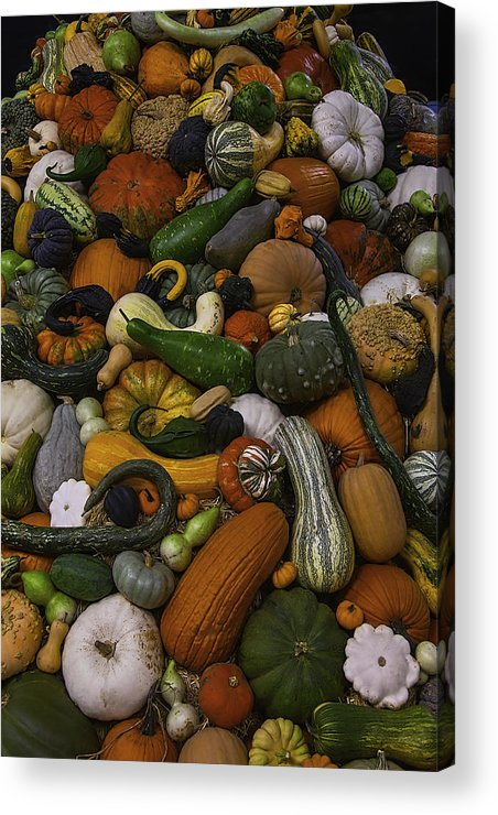 Gourds Acrylic Print featuring the photograph Mountain Of Squash by Garry Gay