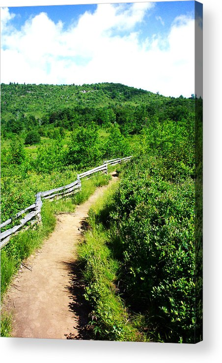 Landscape Acrylic Print featuring the photograph Mountain Path 3 by Patricia Motley