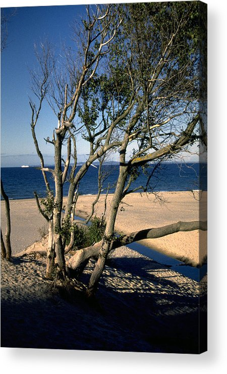 Denmark Acrylic Print featuring the photograph Nordic Beach by Flavia Westerwelle