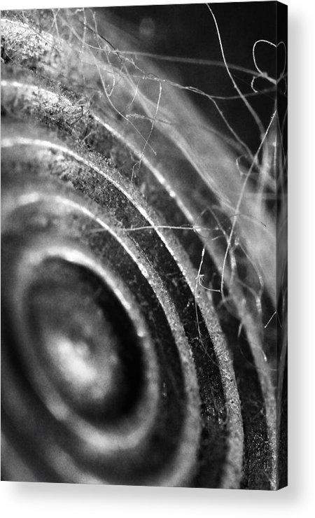 Skip Hunt Acrylic Print featuring the photograph Now Hear This by Skip Hunt