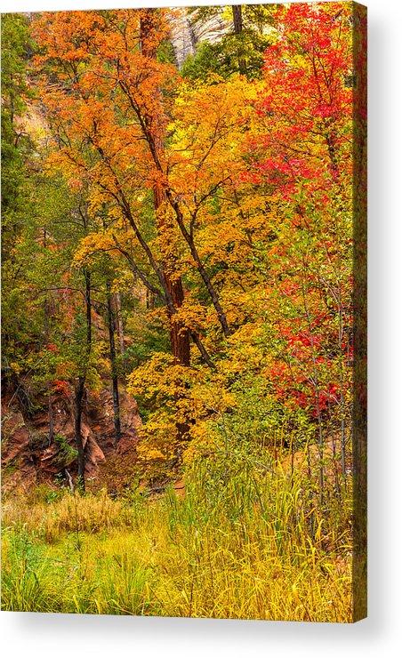 Arizona Acrylic Print featuring the photograph Oak Creek 1 by Jason Keefe