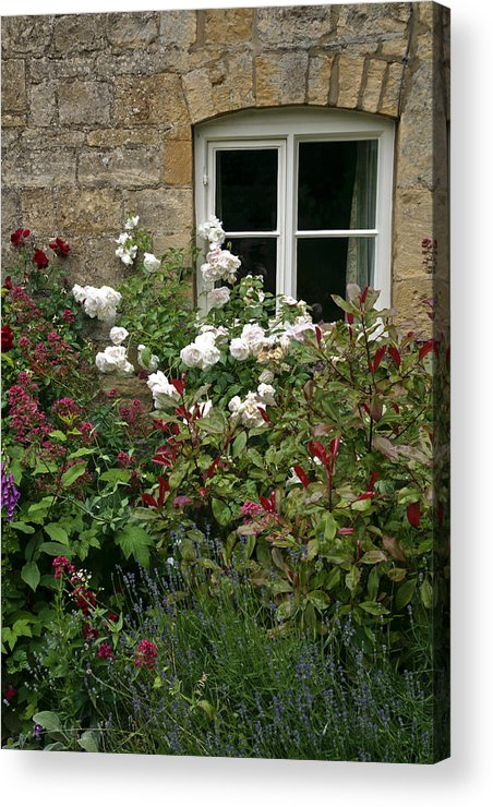 English Acrylic Print featuring the photograph Old English Garden by Michael Carlucci