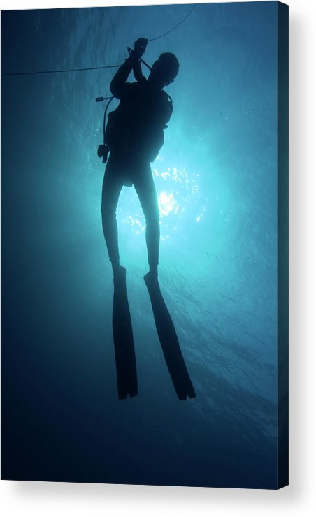 Adventure Acrylic Print featuring the photograph One Scuba Diver Underwater by Sami Sarkis