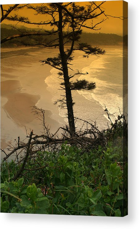Oregon Acrylic Print featuring the photograph Oregon Coast Oo44 by Mary Gaines