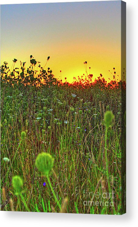 Sunrise Acrylic Print featuring the photograph Over The Hill Top by Robert Pearson