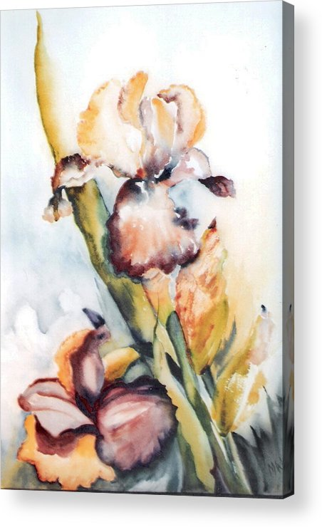 Painting Iris Flowers Floral Yellow Green Garden Acrylic Print featuring the painting Pale Iris by Marsha Woods