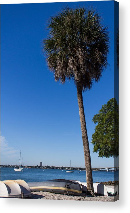 Marina Jacks Acrylic Print featuring the photograph Paradise In Sarasota, Fl by Michael Tesar