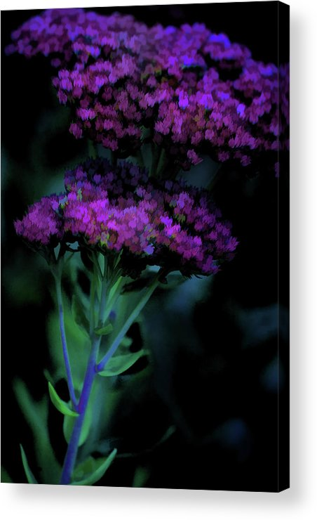 Digital Watercolor Acrylic Print featuring the photograph Purple Passion by Bonnie Bruno