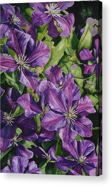 Clematis Acrylic Print featuring the painting Purple Persuasion by Helen Shideler