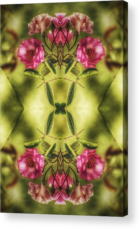 Flower Acrylic Print featuring the digital art Rambling Rose by Brenda Wilcox aka Wildeyed n Wicked