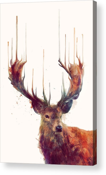 Red Deer Acrylic Print featuring the painting Red Deer by Amy Hamilton
