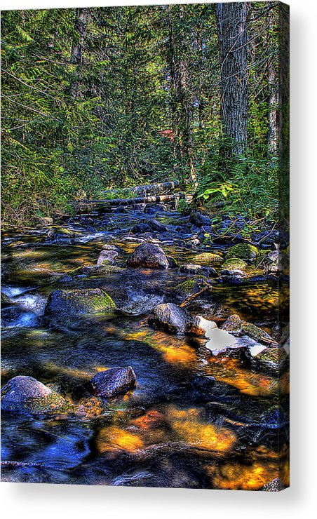 Reeder Creek Acrylic Print featuring the photograph Reeder Creek II by David Patterson