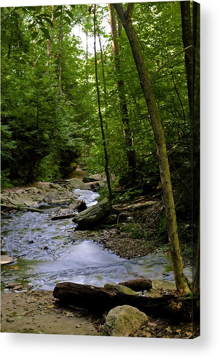 Waterfalls Acrylic Print featuring the photograph Ricketts Glen 3 by Christina Durity