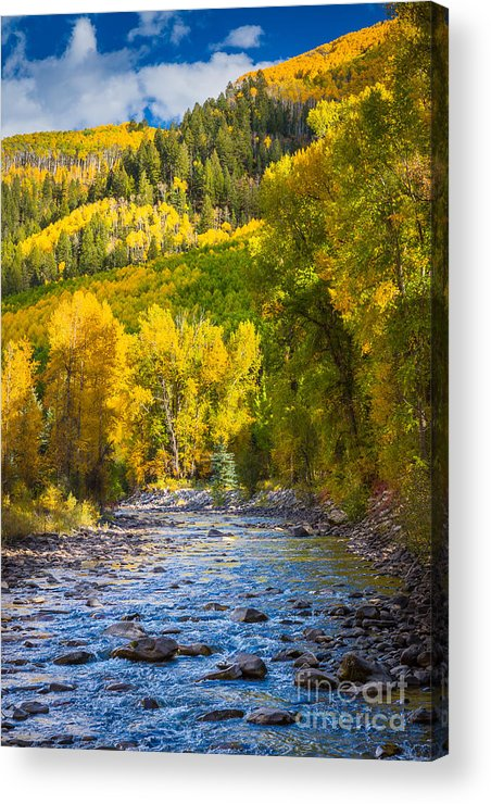 America Acrylic Print featuring the photograph River And Aspens by Inge Johnsson