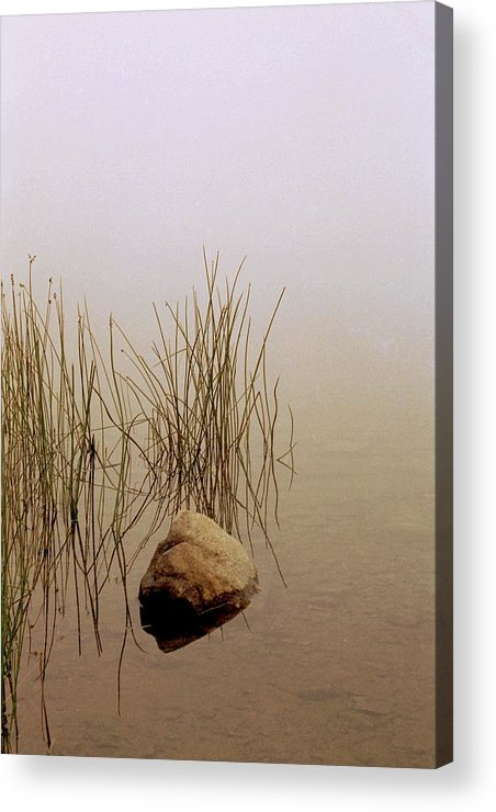 Calm Acrylic Print featuring the photograph Rock And Reeds On Foggy Morning by Roger Soule