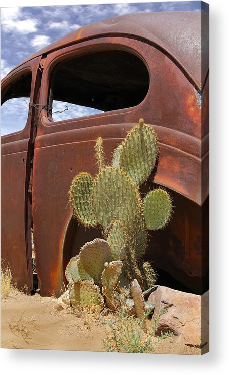 Southwest Acrylic Print featuring the photograph Route 66 Cactus by Mike McGlothlen