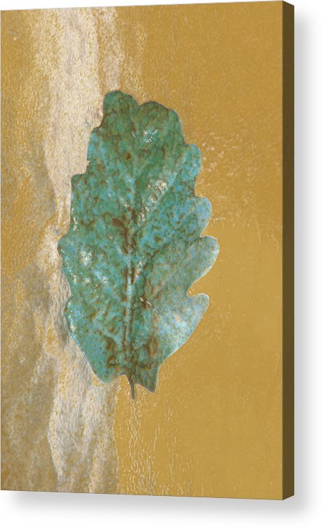 Leaves Acrylic Print featuring the photograph Rustic Leaf by Linda Sannuti