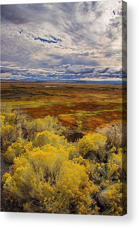 Sagebrush Acrylic Print featuring the photograph Sagebrush Country by Kunal Mehra