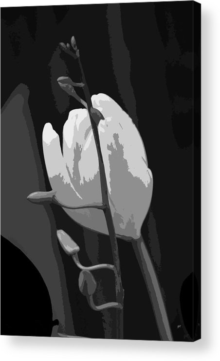 Abstract Digital Art Acrylic Print featuring the photograph Simplicity by Gerlinde Keating - Galleria GK Keating Associates Inc