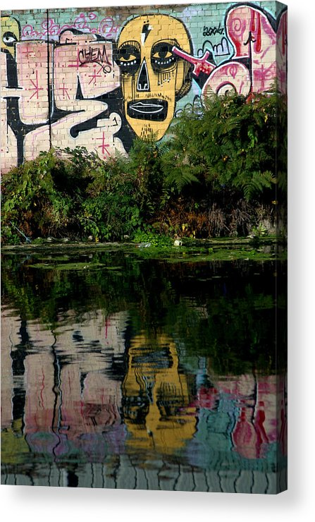 Jez C Self Acrylic Print featuring the photograph Skull Of Entire 2 by Jez C Self