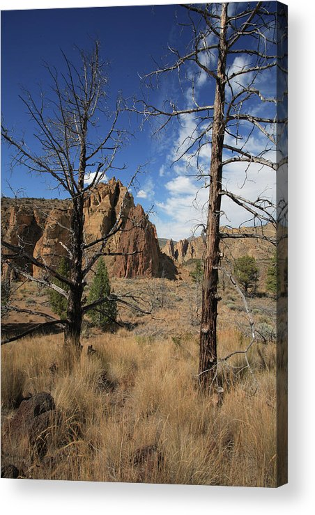 Smith Rock State Park Acrylic Print featuring the photograph Smith Rock I by Bonnie Bruno
