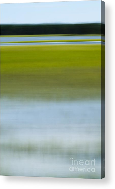 Southern Acrylic Print featuring the photograph Southern Marsh Motion by Dustin K Ryan