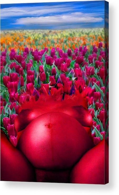 Acrylic Print featuring the photograph Spring by Zygmunt Kozimor