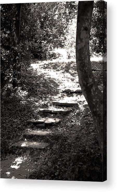 Stairs Acrylic Print featuring the photograph Stairs by Damijana Cermelj