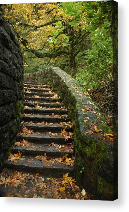 Fall Acrylic Print featuring the photograph Stairway To Fall by Lori Mellen-Pagliaro