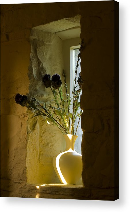 Decoration Acrylic Print featuring the photograph Still Image by Gabor Pozsgai