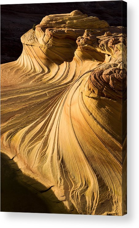 Summer Heat Acrylic Print featuring the photograph Summer Heat by Chad Dutson