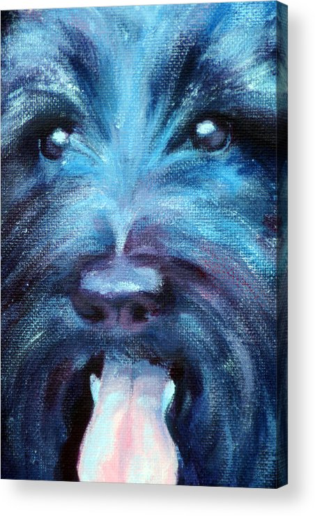 Dog Acrylic Print featuring the painting Suzie by Fiona Jack