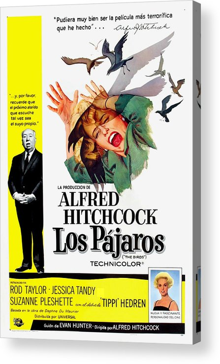 1960s Movies Acrylic Print featuring the photograph The Birds, Aka Los Pajaros, Alfred by Everett