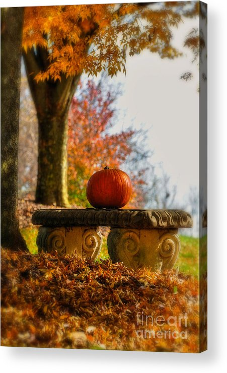 Pumpkin Acrylic Print featuring the photograph The Last Pumpkin by Lois Bryan