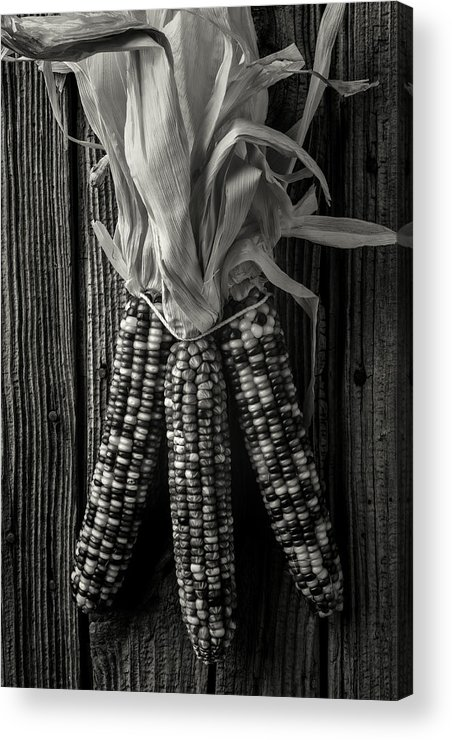 Indian Acrylic Print featuring the photograph Three Indian Corn In Black And White by Garry Gay