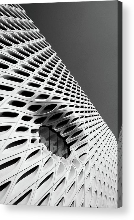The Broad Acrylic Print featuring the photograph Through The Veil- By Linda Woods by Linda Woods