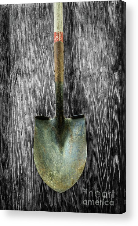 Art Acrylic Print featuring the photograph Tools On Wood 15 On Bw by YoPedro